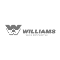 willians y valvulas internacionales